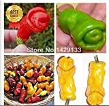 Mr.seeds Penis Chili Red Hot Peter Pepper seeds 200pcs Vegetables & fruit seeds The most funny peppers Bonsai plants Seed for home garden
