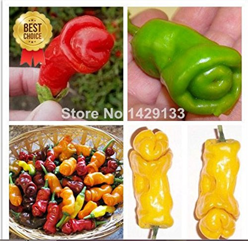 mrseeds-penis-chili-red-hot-peter-pepper-seeds-200pcs-vegetables-fruit-seeds-the-most-funny-peppers-