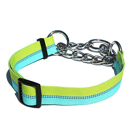 (Leepets Stainless Steel Chain Martingale Dog Collar Fashion Reflective Nylon Choke Collar Heavy Duty Limited Cinch Collar for Dog, Blue/Green Stripe, Large)