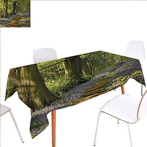 "familytaste Woodland Dinner Picnic Table ClothCarpet of Bluebells Spreads Through Woodland in Staffordshire England Waterproof Table Cover for Kitchen 50""x80"" Green Purple Brown"