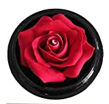 Thai Hand-Carved Soap Flower, 4 Inch Scented Soap Carving, Red Rose In Decorative Pine Wood Case
