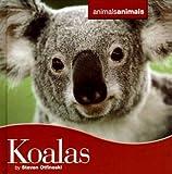 Koalas, Steven Otfinoski, 0761425268