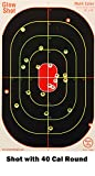 10 inch target - 40 pack (new color) - 16