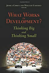 What Works in Development? Thinking Big and Thinking Small