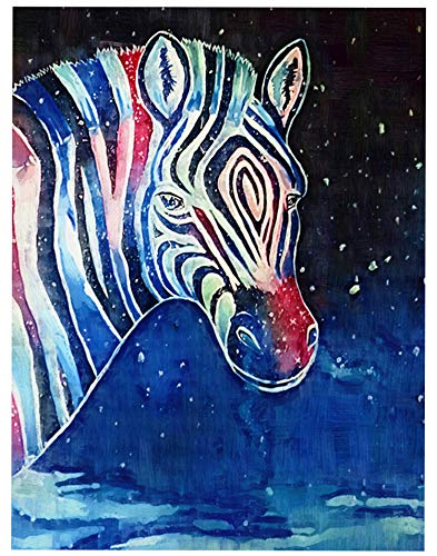 TINMI ARTS 5D DIY Diamond Painting Animal Kits for Adults Cross Stitch Rhinestone Embroidery Home Wall Decoration Colorful Zebra 16×20 inch(40×50CM) (One ()