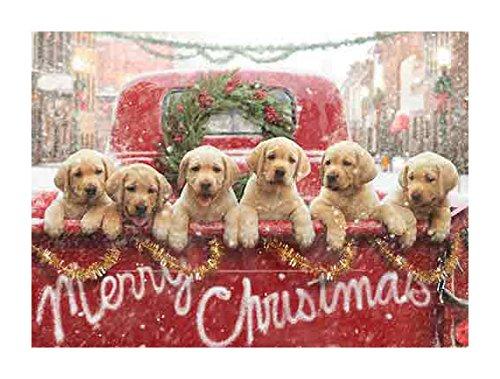 Avanti Press Christmas Cards 32569 product image