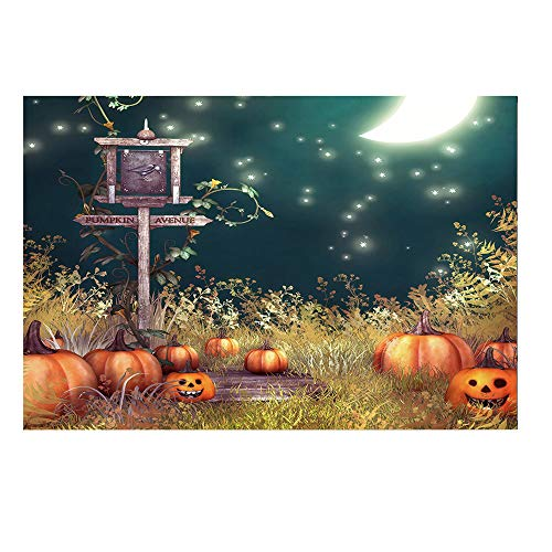 Willsa Halloween Backdrops 5x3FT Lantern Background Photography Studio Decoration