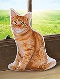 Cat Shaped Pillow - Tabby