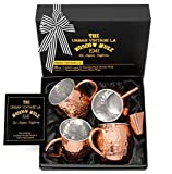 Set of 4 Moscow Mule Copper Mugs with Stainless Steel Lining | Set of 4 Double Wall Copper Mugs | Set of 4 Lined Moscow Mule Copper Mugs | Premium Moscow Mule Gift Set with Shot Glass