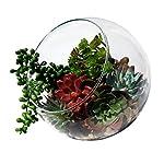 Plantastyck-Artificial-Succulent-Plant-Picks-Unpotted-Assorted-Faux-Echeveria-Fake-Succulent-6-Pack-in-Greens-Red-for-Floral-Arrangement-Home-Decor-Wedding-Fairy-Garden-Bouquet-Centerpiece