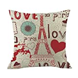 Cyhulu Kawaii 18x18 Inch Quote Throw Creative Cartoon Heart Print Square Pillow Case Cushion Cover Lover Gifts for Happy Valentine's Day Home Bed Sofa Living Room DIY Decoration (H, One size)