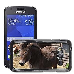 Etui Housse Coque de Protection Cover Rigide pour // M00108181 Pony caballo Piel animal dulce gris // Samsung Galaxy Ace4 / Galaxy Ace 4 LTE / SM-G313F