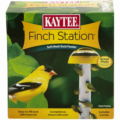 Finch Station (Kaytee Products 100501080 Single-Sock Finch Feeder Station - Quantity 6)