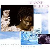 Quiet After The Storm by Dianne Reeves (1995-05-01)