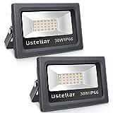 Ustellar 2 Pack 30W LED Flood Light, IP66 Waterproof, 2100lm, 150W Halogen Bulb Equivalent Outdoor Super Bright Security Lights, 2700K Warm White, Floodlight Landscape Wall Lights