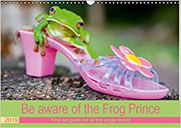 Descargar Torrent Ipad Be Aware Of The Frog Prince 2019: First Aid Guide For All The Single Ladies It PDF