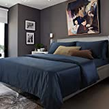 Luxury elegant bedding set of four autumn and winter import all cotton bedding-C Queen2