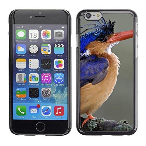 "Premio Sottile Slim Cassa Custodia Case Cover Shell // V00003623 lac kingfisher malachite // Apple iPhone 6 6S 6G 4.7"""