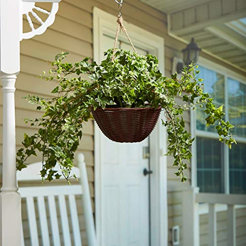 Home Pure Garden Faux English Ivy - Hanging Natural and Lifelike Artificial Arrangement and Imitation Greenery with Basket Office Décor