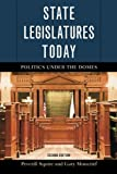 img - for State Legislatures Today: Politics under the Domes by Peverill Squire (2015-03-26) book / textbook / text book