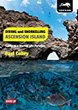 Diving and Snorkelling Ascension Island: Guide to a Marine Life Paradise