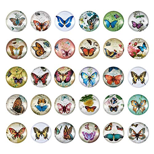 Pandahall About 50pcs/Box Butterfly Printed Half Round Flat Back Glass Cabochons 1 Inch (25mm) for Jewelry Making ()
