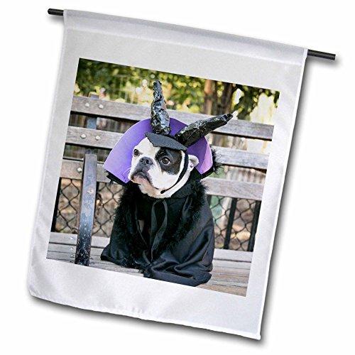 Danita Delimont - Halloween - New York City. Pet Halloween contest at Thompkins Square Park. - 18 x 27 inch Garden Flag