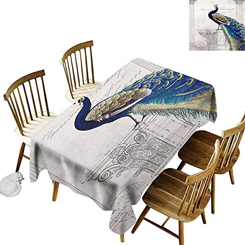 (SLLART Table Cloth for Outdoor Beautiful Bird Peacock Sitting on a Golden Perch Isolated W 54