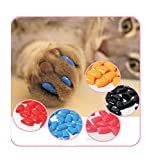 HOT Sale! 2017 HOT 100Pcs Lot Colorful Soft Pet Dog Cats Kitten Paw Claws Control Nail Caps Cover Size XS S M L XL XXL With Adhesive Glue (S)