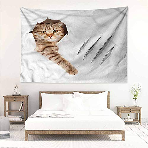 Animals Wool Tapestry - Decorative Tapestry,Animal Funny Cat in Wallpaper Hole,Literary Small Fresh,W90x59L