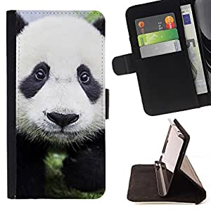 Momo Phone Case / Flip Funda de Cuero Case Cover - Bebé lindo de la panda;;;;;;;; - Apple Iphone 6