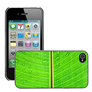 Hot Style Cell Phone PC Hard Case Cover // M00151213 Leaf Macro Green Lush Vibrant // Apple iPhone 4 4S 4G