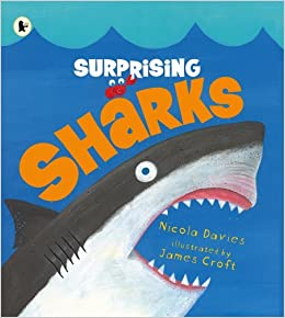Image result for surprising sharks nicola davies