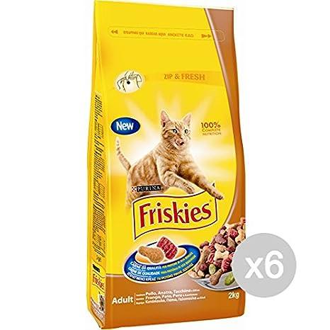 Friskies Juego 6 Gato Croccantini kg 2 Pollo Pavo Comida para Gatos: Amazon.es: Productos para mascotas