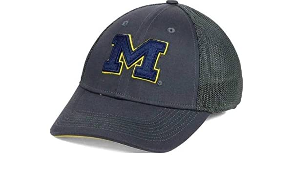0659966e7c7 Amazon.com   NIKE Legacy 91 Dri Fit Michigan Wolverines Mesh Swoosh Flex  Fit Cap Hat Anthracite   Sports   Outdoors
