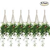 Plant Hanger, Hanging Planter/Plant Holder Indoor
