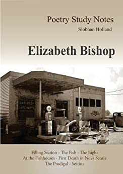 essays sestina elizabeth bishop The sestina by elizabeth bishop the sestina by elizabeth bishop is titled after the verse form of the italian origin by that name however, the name of the poem.