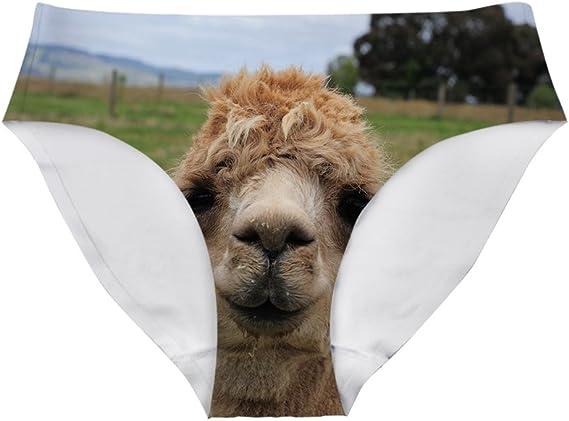 Teal Alpacas Cute Llamas Baby Womens Underwear Soft Bikini Gift