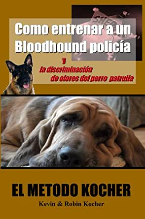 how to train a bloodhound to listen