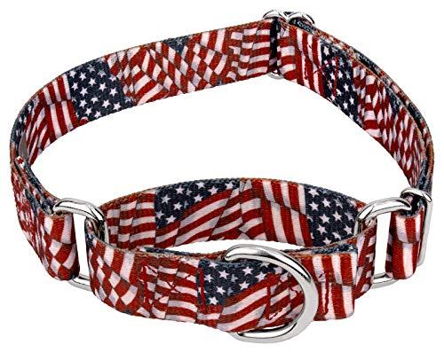 Country Brook Design Patriotic Tribute Martingale Dog Collar-L