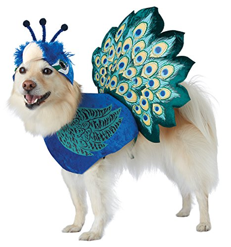 California Costumes Collections PET20165 Pretty As A Peacock Dog Costume, Large