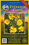 Everwilde Farms - 1000 Sand Coreopsis Native Wildflower Seeds - Gold Vault Jumbo Seed Packet