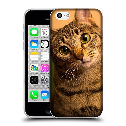 Just Phone Cases Coque de Protection TPU Silicone Case pour // V00004243 Aux yeux verts chat surpris // Apple iPhone 5C