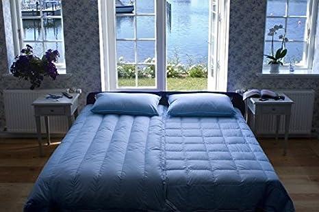 Piumini Danesi BI-Comfort® - Invernale (135x220cm x 770g): Amazon.it ...