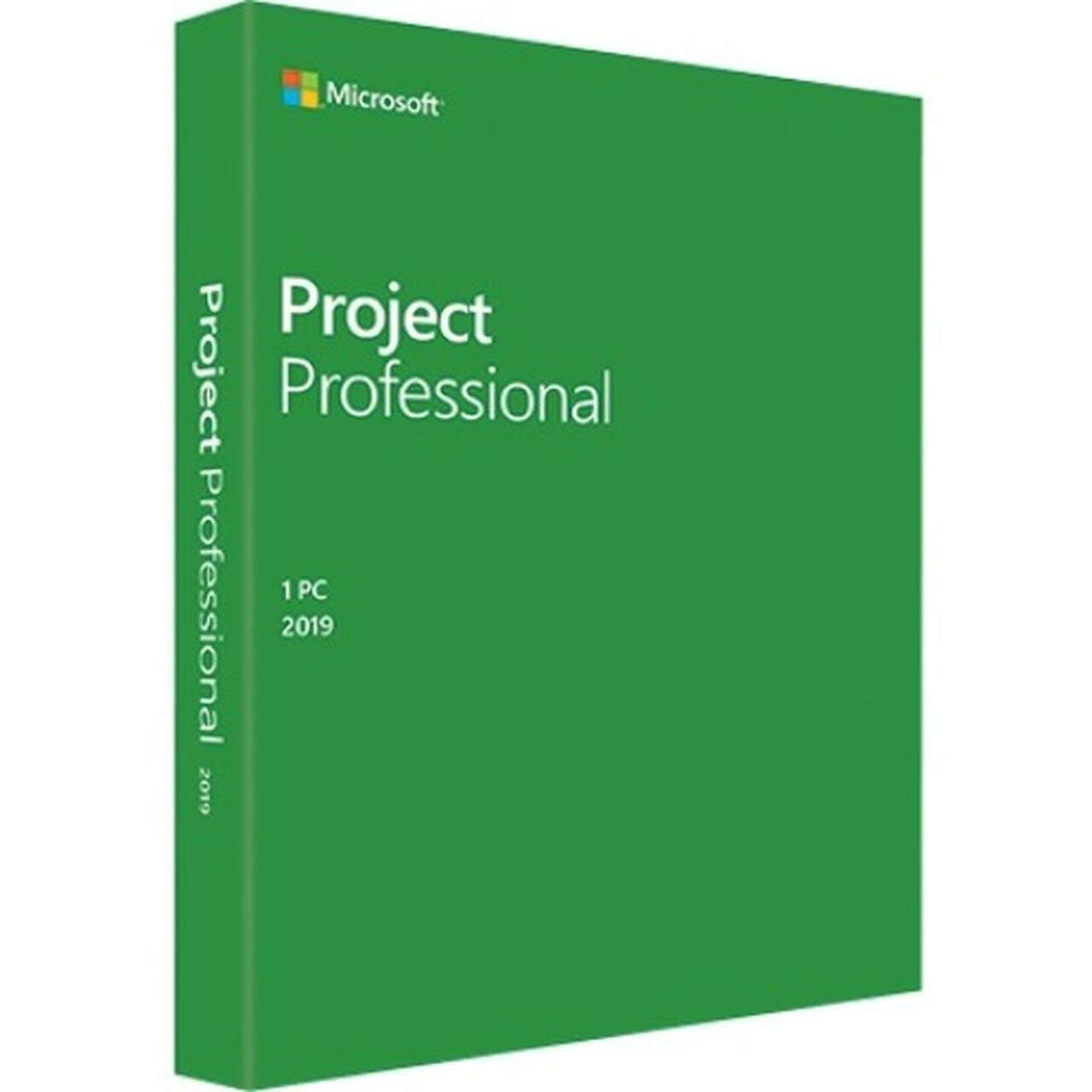 Microsoft Project Professional 2019 by Microsoft