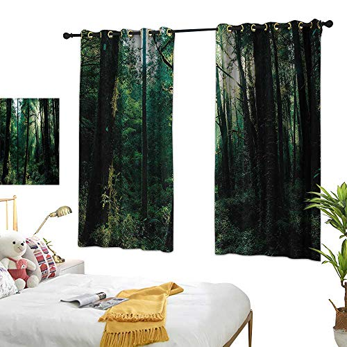 G Idle Sky Bedroom Windproof Curtain Nature Children's Bedroom Curtain Sunset in Woods Trees 55