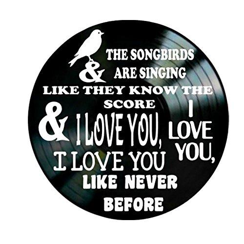 Fleetwood Mac Songbird song lyrics on a Vinyl Record Album Wall Decor by VinylRevamped