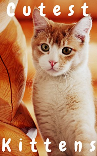 Cutest Kittens: 1500+ Picture Cutest Kittens Cats Photobook for Kids (BABY KITTENS Cats Dogs Cute Fluffy Animals For Children ,Cat Memes,cat photobook ,cat sebastian,cat bybee,Cat School,Cutest Kitt)