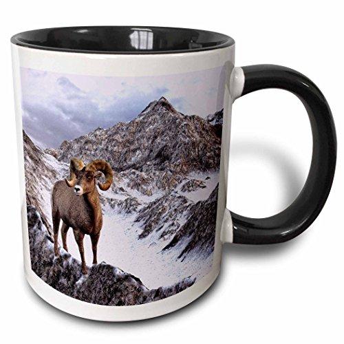 3dRose mug_127534_4
