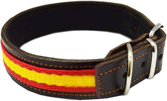Tiendas LGP - Collar para Perros de Piel Flor con Bandera de España, 2,5 x 47 cm, Color Cuero: Amazon.es: Productos para mascotas